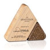"Eco-Friendly Brown Coconut and Natural Bamboo Award, Available In 3 Sizes: 4""H, 5 1/4""H, 6""H"